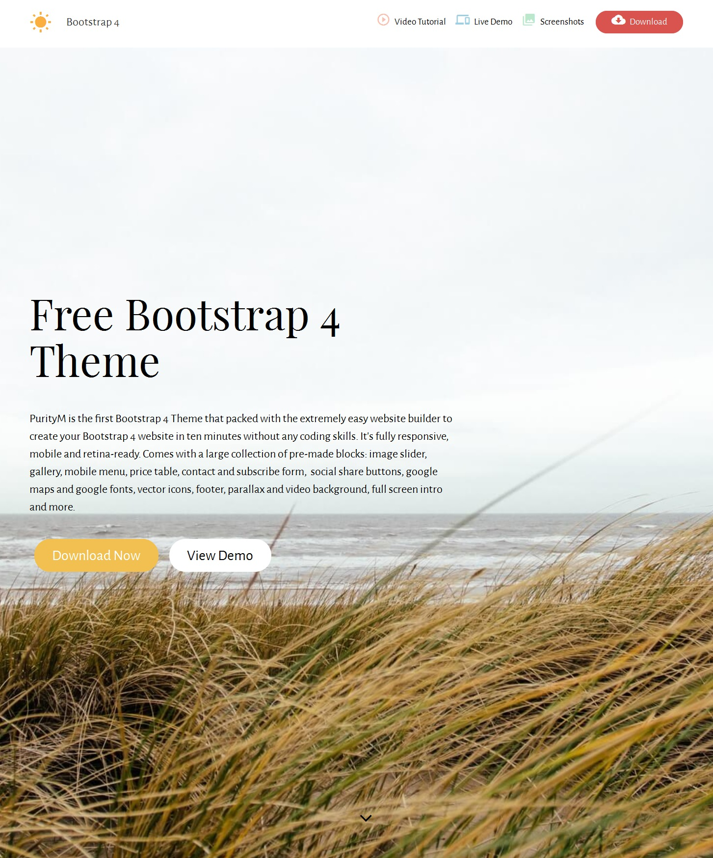 Free Download Bootstrap Portfolio Theme