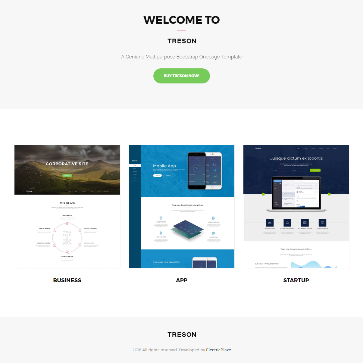 Responsive Bootstrap Treson Templates
